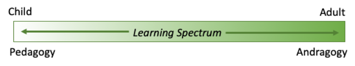 Spectrum of learning, ranging from pedagogy and childhood to andragogy and adulthood